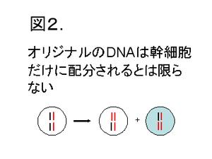 Dna2_2