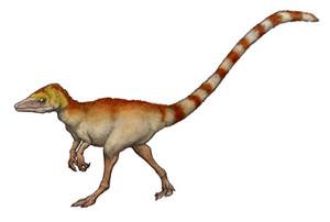 Sinosauroputerikusu