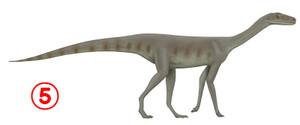1024pxasilisaurus
