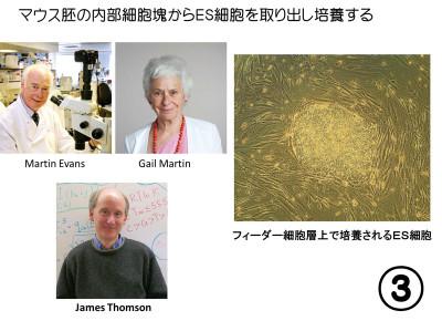 やぶにらみ生物論93: ES細胞とi...
